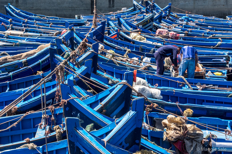 Dozens of fishing boats tied togother in Essaouira.