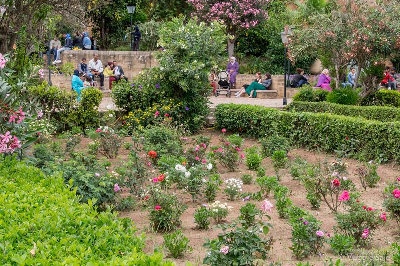 Walled garden in old town Rabat.