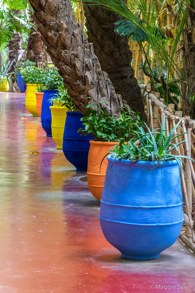Majorelle Gardens in Marrakech.