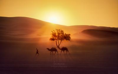 Good morning from the desert of Merzouga