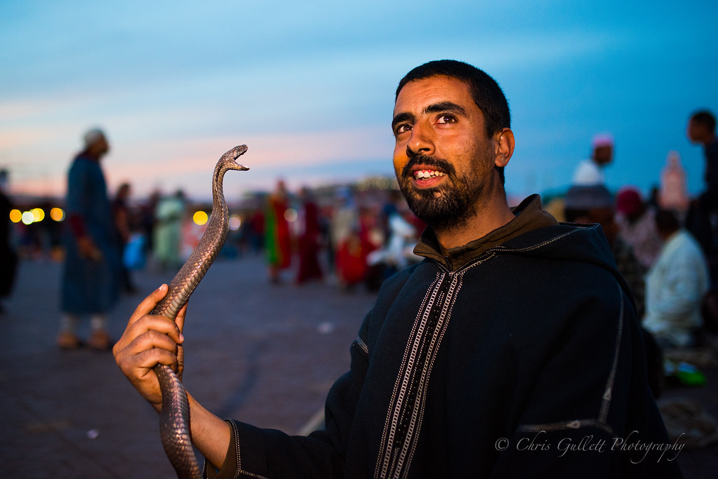 A Cobra Charmer in Jemma el-Fnaa at sunset just after maghrib prayer call.  People who handle cobras for a living take their prayers particularly  seriously.