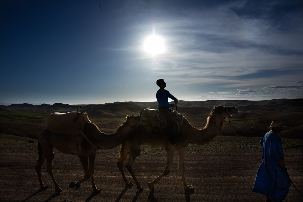My 15 year old son on a Camel in the Agafay desert.