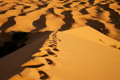 Merzouga Desert
