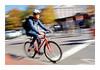 Harvard Biker