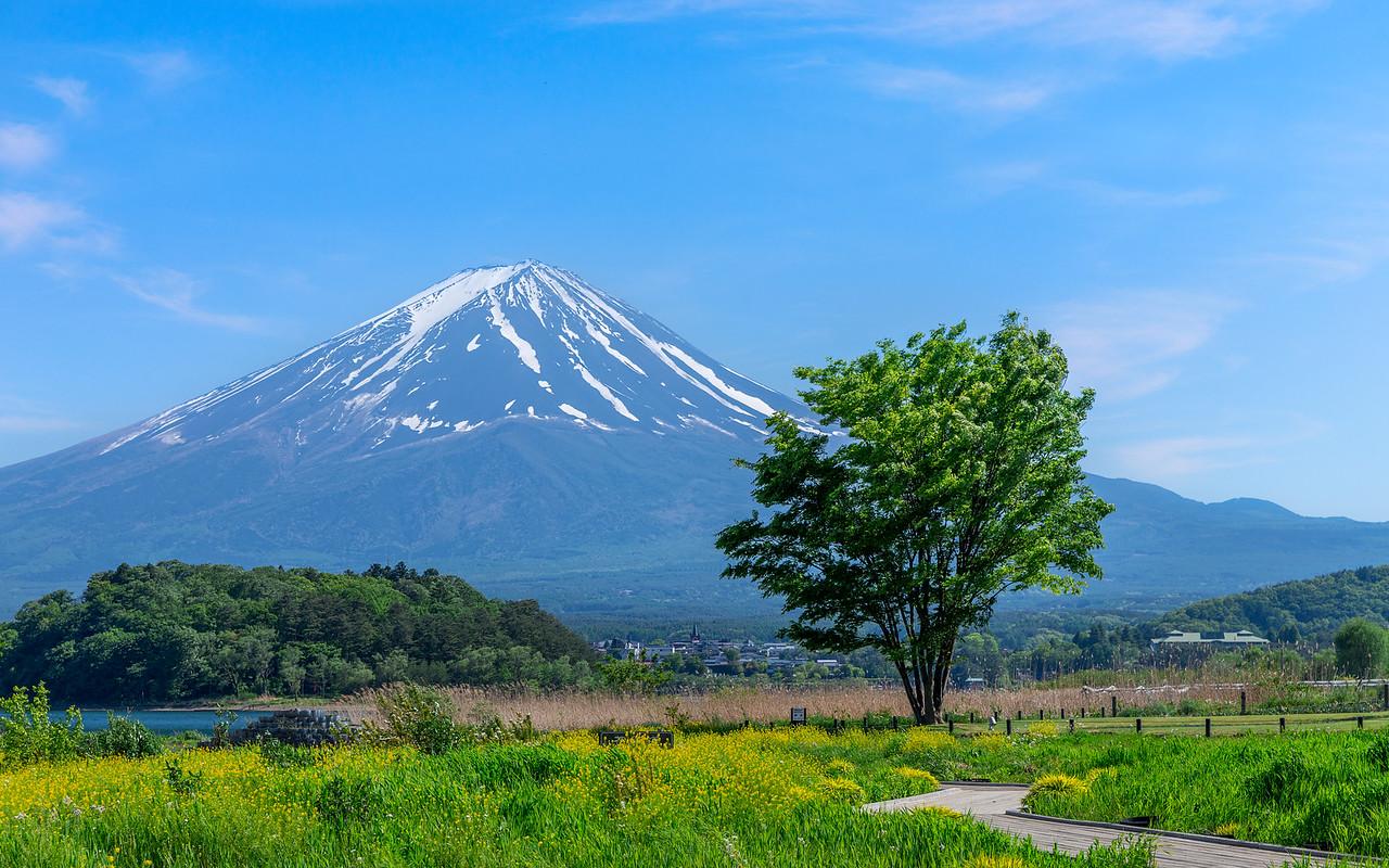 Mount Fuji #04