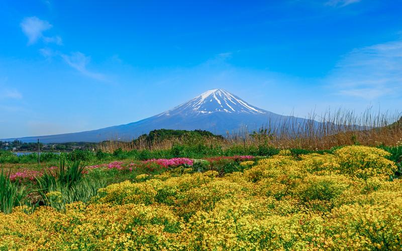 Mount Fuji #03