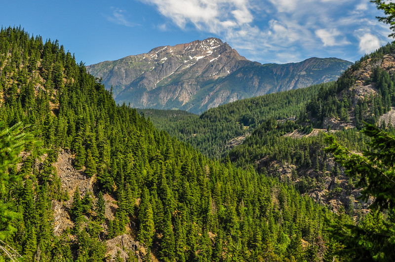 Towering Mountains & Spruce Forests of the Northern Cascades