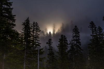 Sun Trying to break through in the morning, Mount Rainier National Park, in the U.S. state of Washington