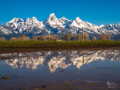 Teton Thaw