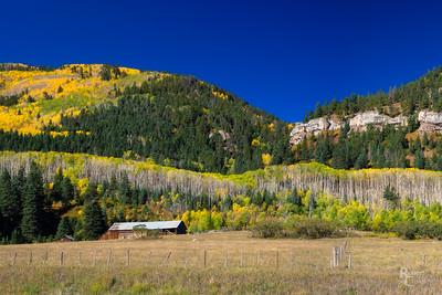 Autumn Color in Southwest Colorado