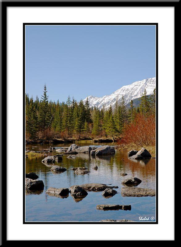 "Ref #3293-N <span id=""caption""><div class=""photocredit"">photo © LenScape Photography</div></span>"