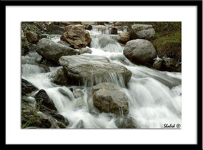 Ref #0548 photo © LenScape Photography