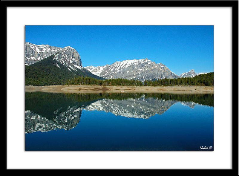 "Ref #4176-N <span id=""caption""><div class=""photocredit"">photo © LenScape Photography</div></span>"