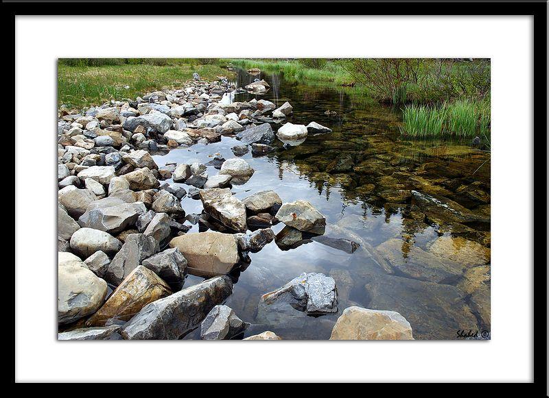 "Ref #0502-N <span id=""caption""><div class=""photocredit"">photo © LenScape Photography</div></span>"
