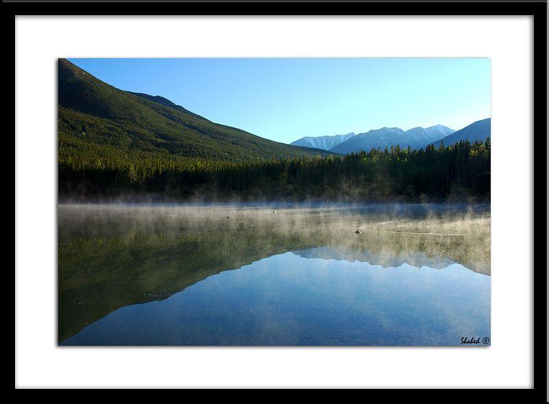 "Ref #0898-N <span id=""caption""><div class=""photocredit"">Photo © LenScape Photography</div></span>"