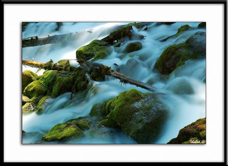 "Elizabeth Falls. Alberta, Canada.  Ref #2209 -N <span id=""caption""><div class=""photocredit"">Photo © LenScape Photography</div></span>"