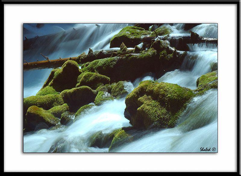 "Karst Spring-2. Alberta, Canada  Ref #2227-N <span id=""caption""><div class=""photocredit"">Photo © LenScape Photography</div></span>"