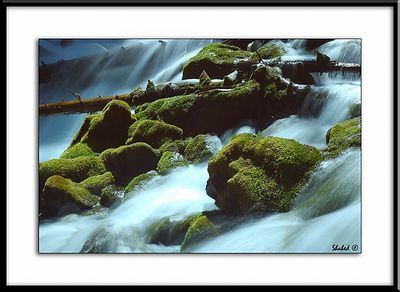 Karst Spring-2. Alberta, Canada  Ref #2227-N Photo © LenScape Photography