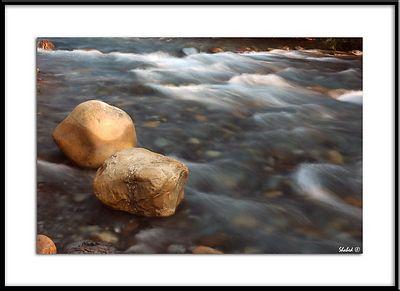 Ref #1411-N Photo © LenScape Photography