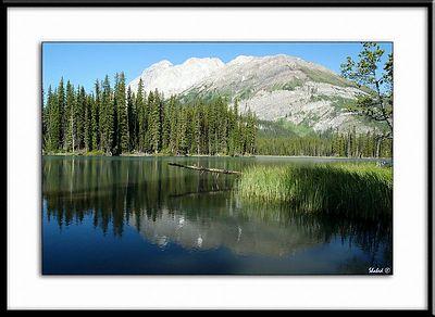 Mud Lake. Alberta  Ref #2124-N Photo © LenScape Photography