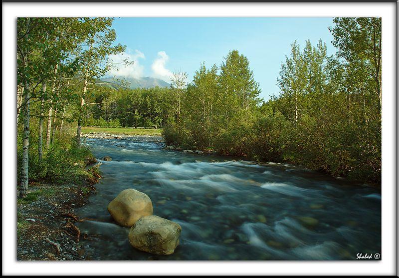 "Ref #1414-N <span id=""caption""><div class=""photocredit"">Photo © LenScape Photography</div></span>"