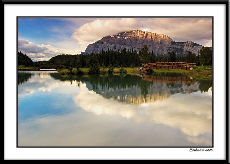 "Ref #5946-1N <span id=""caption""><div class=""photocredit"">photo © LenScape Photography</div></span>"