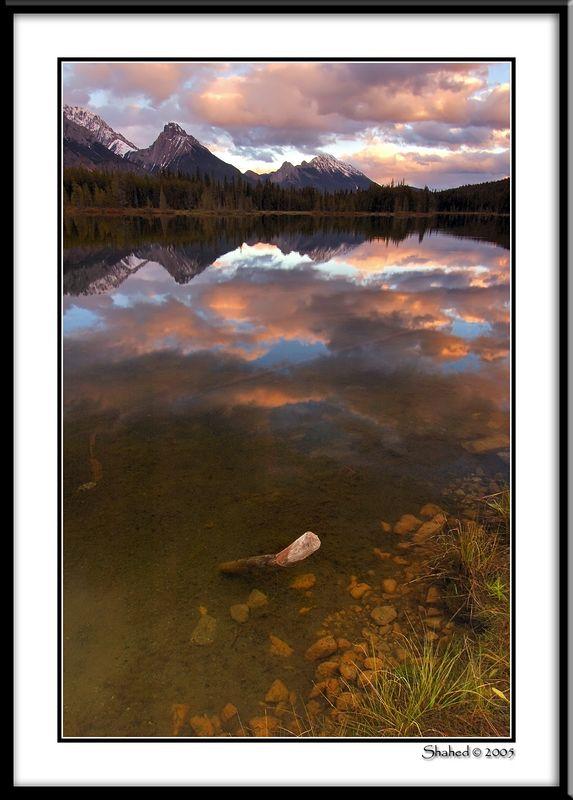 "Ref #4169-1N <span id=""caption""><div class=""photocredit"">photo © LenScape Photography</div></span>"