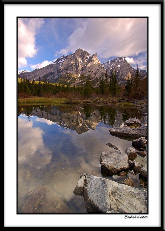 "Ref #2659-1N <span id=""caption""><div class=""photocredit"">photo © LenScape Photography</div></span>"