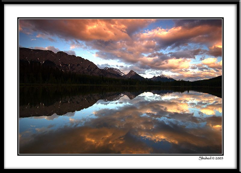 "Ref #4175-1N <span id=""caption""><div class=""photocredit"">photo © LenScape Photography</div></span>"