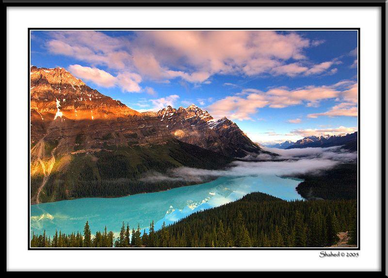 "Ref #6369-1N <span id=""caption""><div class=""photocredit"">photo © LenScape Photography</div></span>"