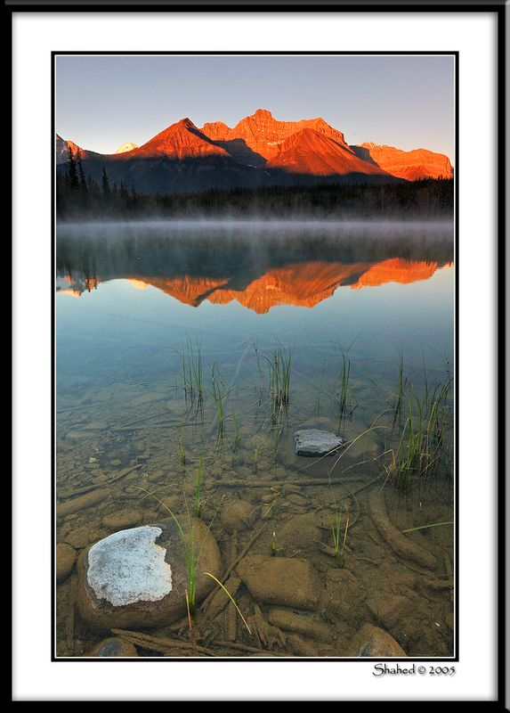 "Ref #7511-1N <span id=""caption""><div class=""photocredit"">photo © LenScape Photography</div></span>"