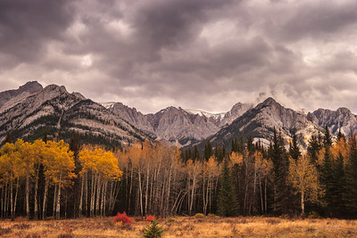 Fall Colors Canadian Rockies