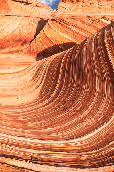 The Wave, Paria Plateau, AZ