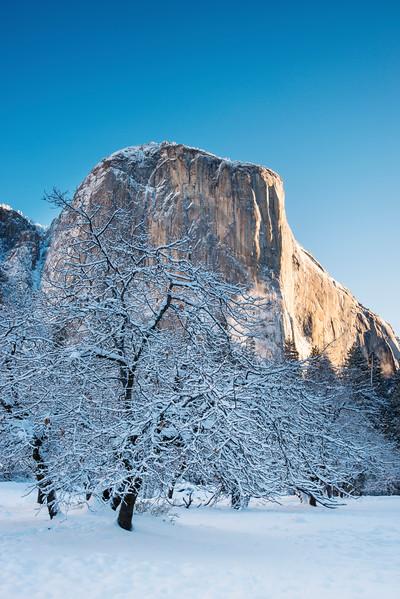 Winter El Cap