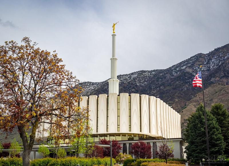 Look Toward the Temple