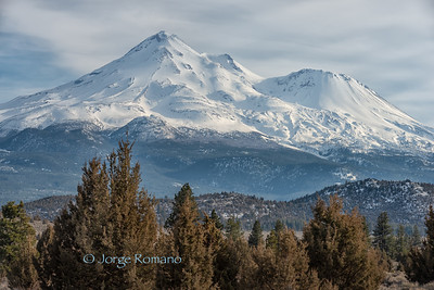 Mount Shasta view in March