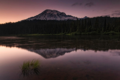 Mount Rainier @ summer sunset