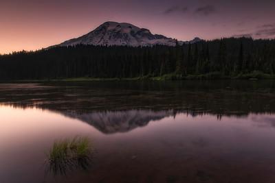 Mount Rainier @ summer sunset