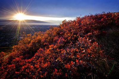 Squaw Peak Overlook