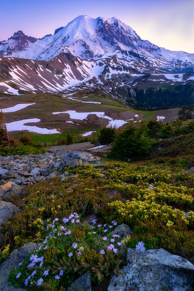 Wildflower season is starting on Mt. Rainier and what a joy it is to behold! This image is from my adventure yesterday at the Mountain.