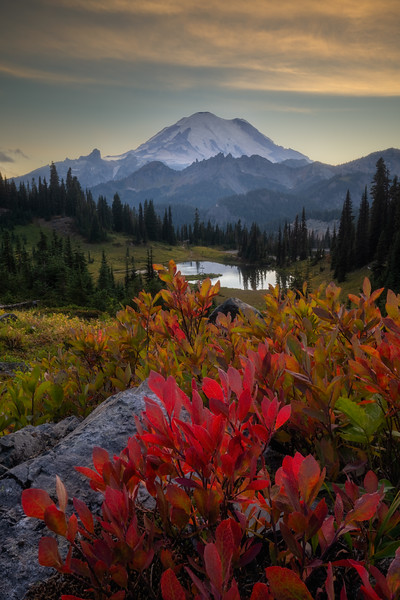 Tipsoo Lake Autumn Transitions