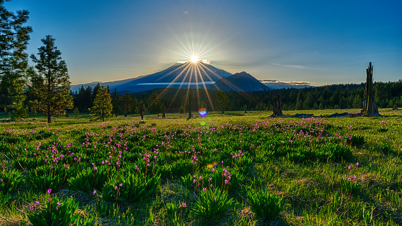 Sunrise and Shooting Stars, Mt. Shasta, CA, 3-May-2021