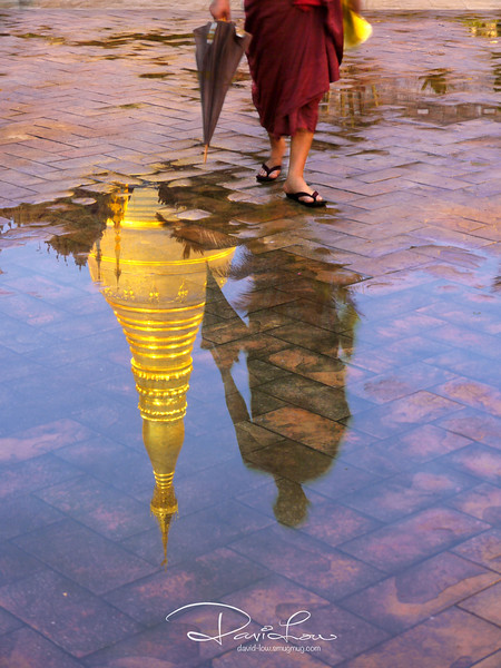 Image of a buddhist country (Myanmar) - We set foot after a shower and I managed to make good use of it. it was about 7.30 pm and the light changed in a matter of minutes under the pool of reflection showing the lit gilded spire. A monk appeared from behind with inquisitiveness. I quickly orchestrated him to walk beside the puddle and lo and behold he willingly obliged, giving me just enough time to get the shot I visualised. I knew at that moment I had caught an image that would be symbolic of my journey to Myanmar.  One of my favourites for this trip !