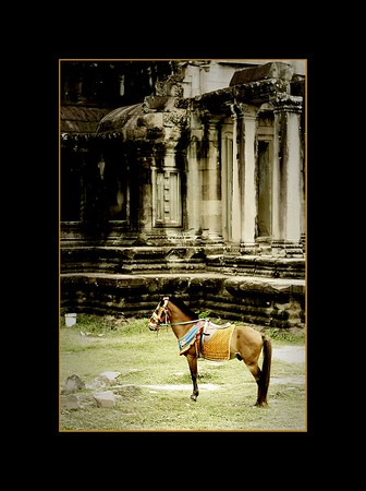 Decorated Horse in Front of Library, Angkor Wat, Cambodia