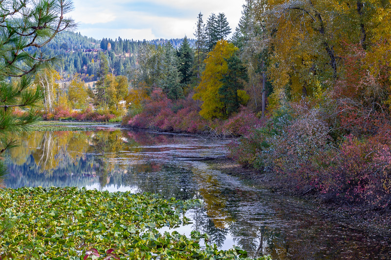 On the Trail of the Coeur d'Alenes ~ Idaho
