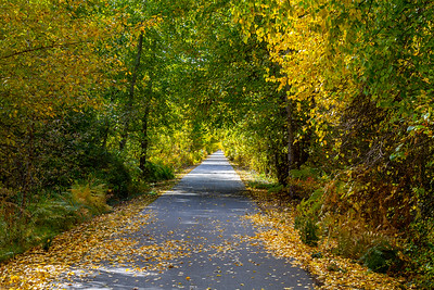 Trail of the Coeur d'Alenes ~ Idaho