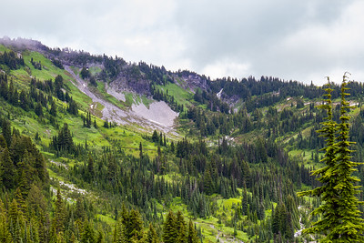 Hiking from Paradise ~ Mt Rainier