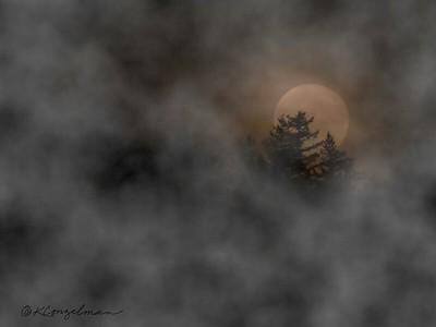 Halloween Full Moon Rising