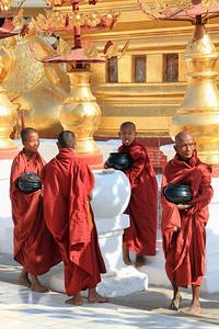 Apprentice Monks, Shwezigon Paya (Pagoda) #1, Bagan (Pagan)