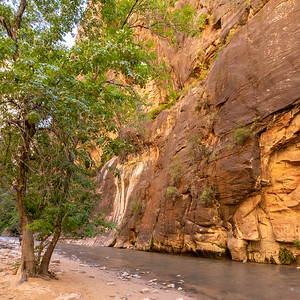 The Narrows, North Fork of the Vigin River